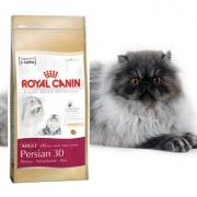 ROYAL CANIN CAT PERSIAN ADULT 30 4KG