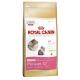ROYAL CANIN CAT KITTEN PERSIAN 4KG